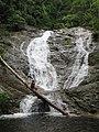 Lata Iskandar Waterfall, Cameron Highlands - panoramio.jpg