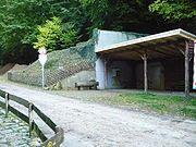 Lauftreffstützpunkt Alsbach