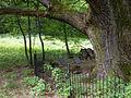 Lauske Bresslerscher Friedhof-2.jpg