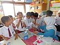 Learning About Roundworms - Indonesia (17056224482).jpg