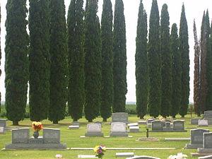Legion Memorial Cemetery in Tensas Parish IMG 1267