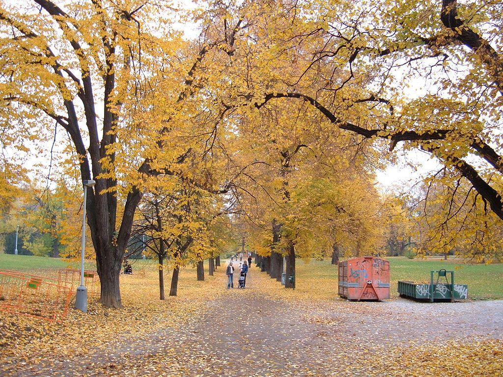 Letná Park in late October, Prague