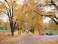 Letná Park in late October, Prague.JPG
