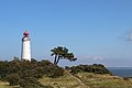 Leuchtturm Dornbusch.JPG