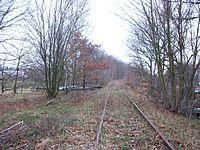 Limbach Bahndamm Richtung Limbach.JPG