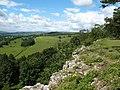 Limestone edge, Leyburn Shawl - geograph.org.uk - 891211.jpg