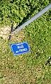 Limonest - Plaque de rue de l'Allée des Frênes au sol (juin 2018).jpg