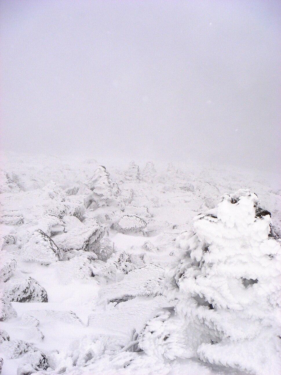 Lion's Head snow