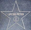 Lipcsei Péter csillaga Kazincbarcikán.JPG