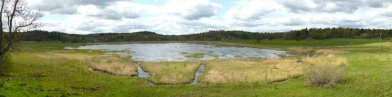 Lissmasøen set fra fugletårnen øst for søen, maj 2012.