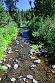 Little Summit Creek (Crook County, Oregon scenic images) (croDB2641).jpg