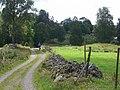 Local road - panoramio.jpg
