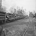 Log train02.jpg