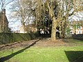 Long shadows in the churchyard at Holy Trinity, Winchester - geograph.org.uk - 1167561.jpg