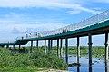 Longfeng Wetland Park observation bridge.jpg