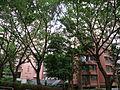 Lung Yan Court.JPG