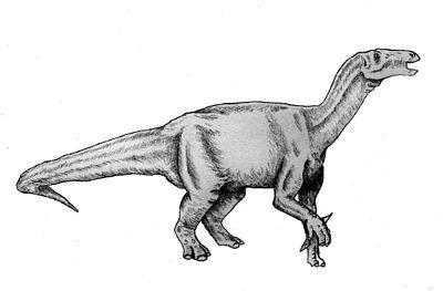 Lurdusaurus1.jpg