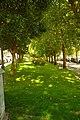 MADRID A.V.U. JARDIN-CINTA S. FRANCISCO EL GRANDE - panoramio (16).jpg