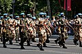 MINUSMA Bastille Day 2013 Paris t104657.jpg
