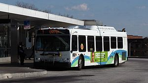 Route 7 (MTA Maryland)
