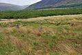 Machrie Moor stone circle 42.jpg