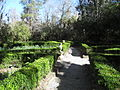 Magnolia Plantation and Gardens - Charleston, South Carolina (8555490317).jpg
