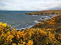 Maidenhed bay - panoramio (6).jpg