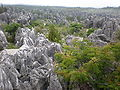 Major Stone Forest NE outer area 4.JPG