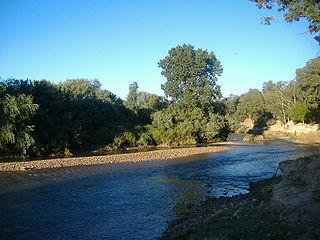 Battle of the Bagradas River