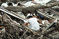 Man searching through rubble in Meulaboh after 2004 tsunami DM-SD-06-11957.JPEG