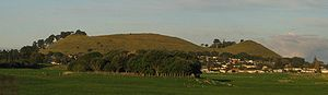 The volcanic cone of Mangere Mountain viewed from across the lava fields of Ambury Regional Park.
