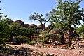 Mapungubwe, Limpopo, South Africa (19923066473).jpg