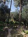 "Marokko- Agadir- Hohe Atlas- Wanderung im ""Paradiestal"" - Etagenkultur - Bohnen-Bananen-Datteln - panoramio.jpg"