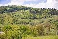 Marynychi, Chernivets'ka oblast, Ukraine - panoramio (1).jpg