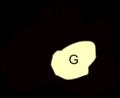 MashlimU-G.png