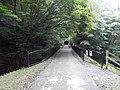 Matsuidamachi Sakamoto, Annaka, Gunma Prefecture 379-0307, Japan - panoramio (5).jpg