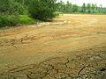 Mazurinskoe lake Gorenka source 2010.jpg