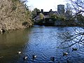 Meeting place for ducks - geograph.org.uk - 1125254.jpg