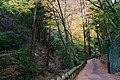 Meiji no Mori Minoh Quasi-National Park Minoh Osaka pref Japan21s3.jpg