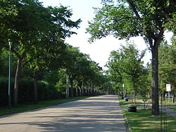 The Next of Kin Memorial Avenue at Woodlawn Cemetery Saskatoon