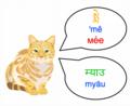 Meow-dz,ne.png