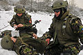 Military and Police Advisory Training II at the Joint Multinational Readiness Center 121202-A-RA799-005.jpg