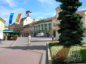Miskolc city hall square