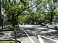 Miyazaki Prefectural Route11-KenchoKusunokiNamiki Street.jpg