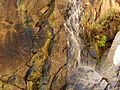 Molino Basin Waterfall - Flickr - treegrow (5).jpg