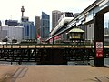 Monorail over open Pyrmont Bridge.jpg