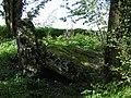 Montmirail - Dolmen du trou du boeuf.jpg