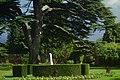 Monument and Cedar Garden.jpg