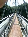 Most nad Labem vedle kempu - Poděbrady.jpg