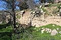 Mount Eitan IMG 2722.JPG
